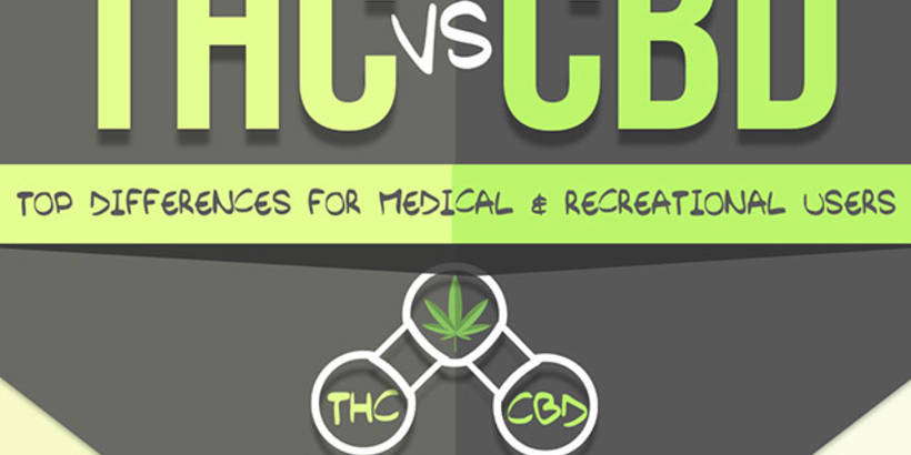 thc-vs-cbd-infographic copy.jpg